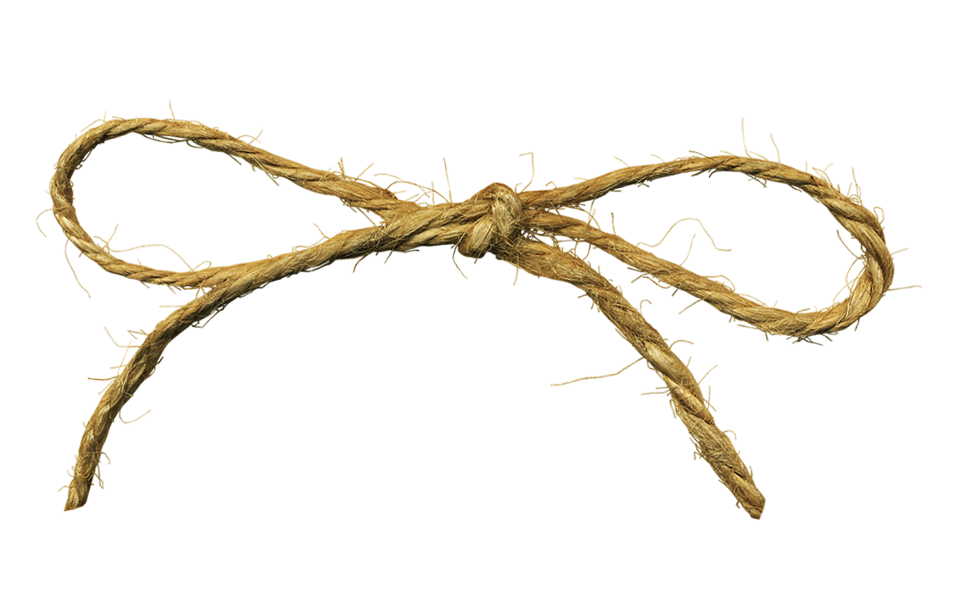 Twine bow png. Hd transparent images pluspng