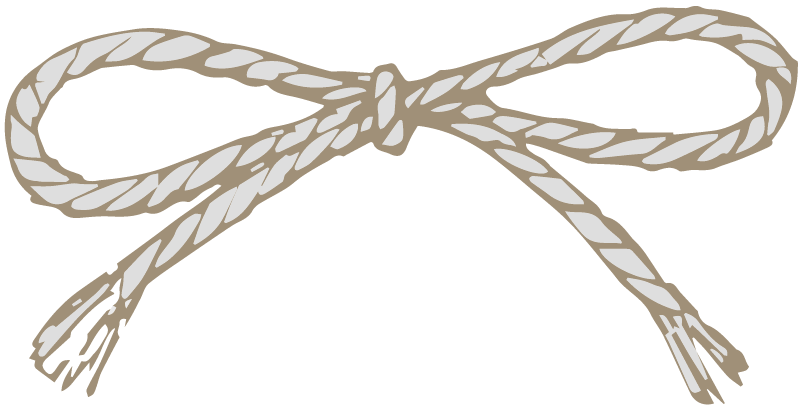 twine bow png