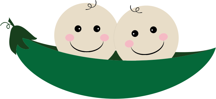 Peas drawing two. Clipart in a pod