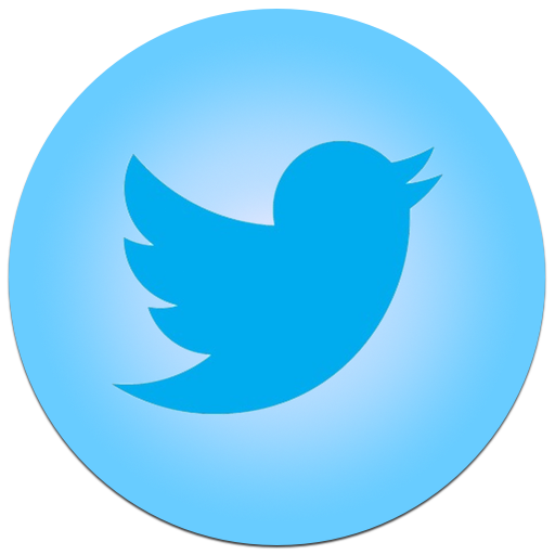 Twitter logo .png. Bird blue icon png