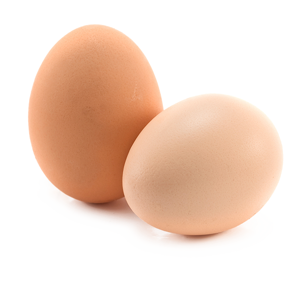 Two eggs png. One under lime