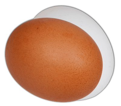 Two eggs png. Answer to riddle egg