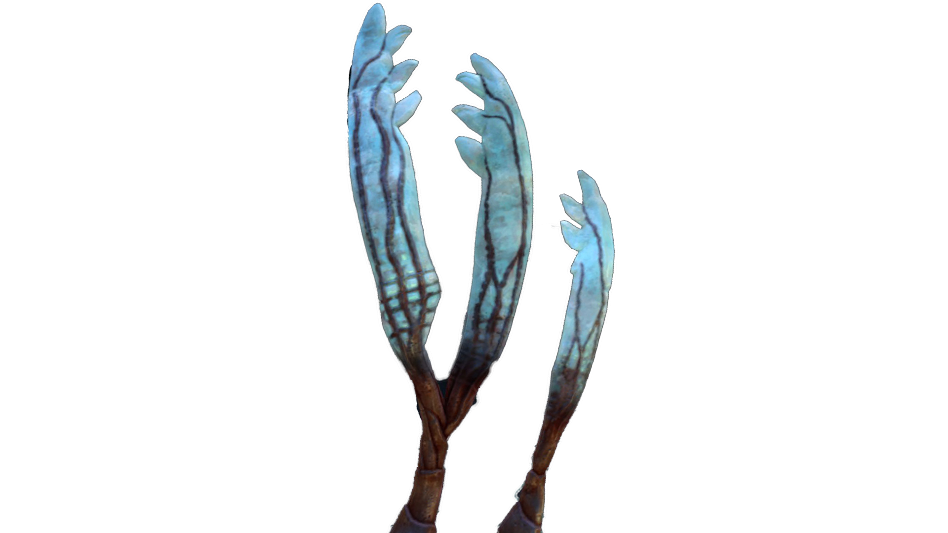 Two feathers png. Gabe s feather subnautica