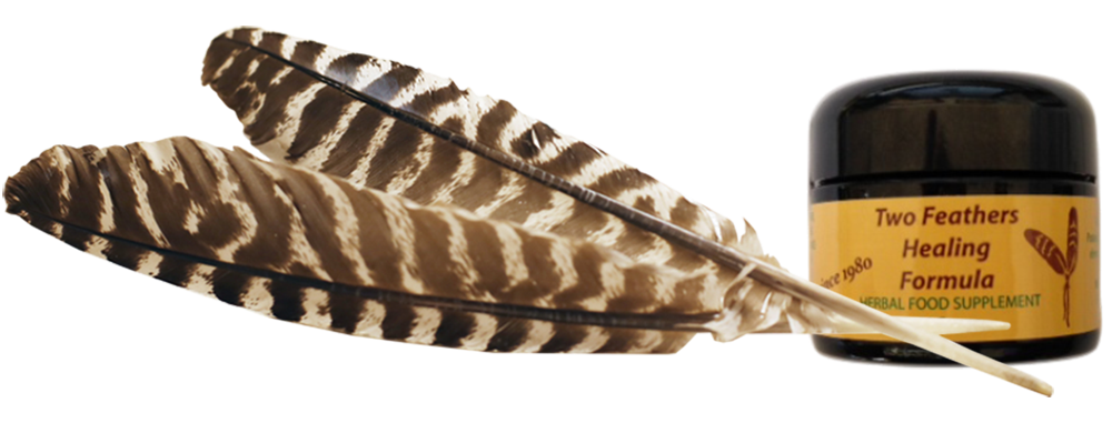 Two feathers png. Ha i laugh in