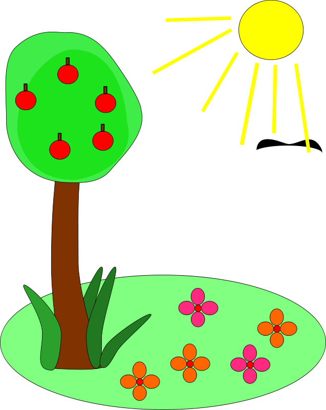 Under the clipart plant. And sun png transparent