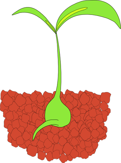 Under the clipart plant. Free graphics of plants