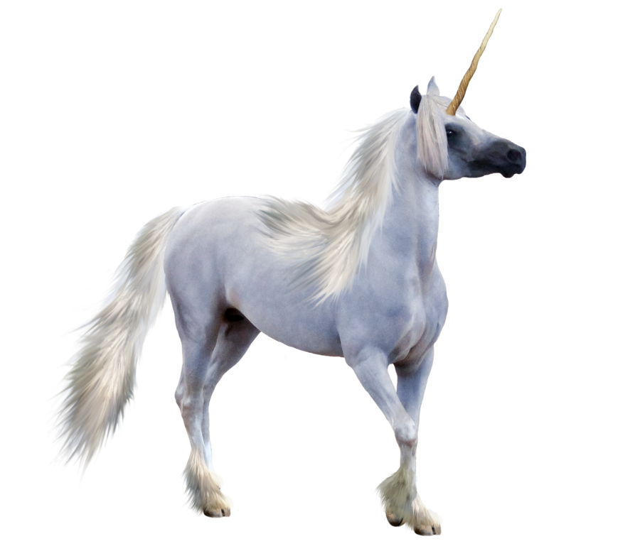 Unicorn transparent png. Free icons and backgrounds