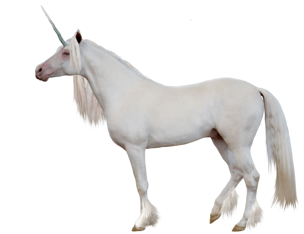 Unicorn transparent png. Sideview stickpng