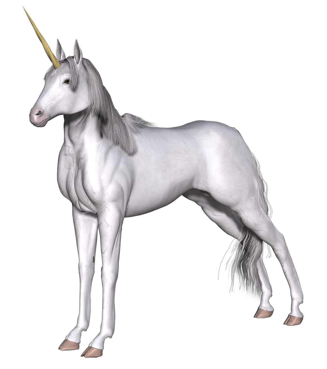 Unicorns transparent. Full white unicorn png