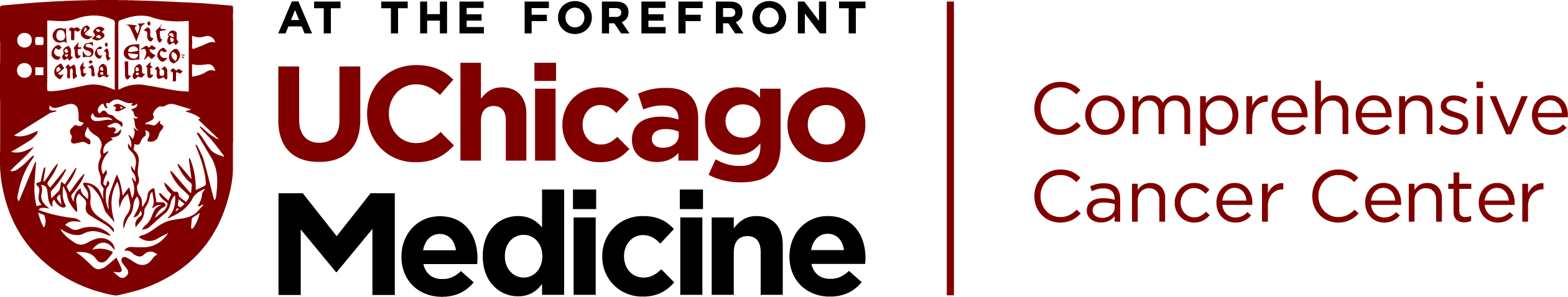 university of chicago transparent png