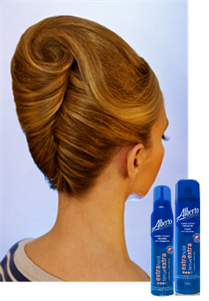 Updo Clip French Roll Transpa Png