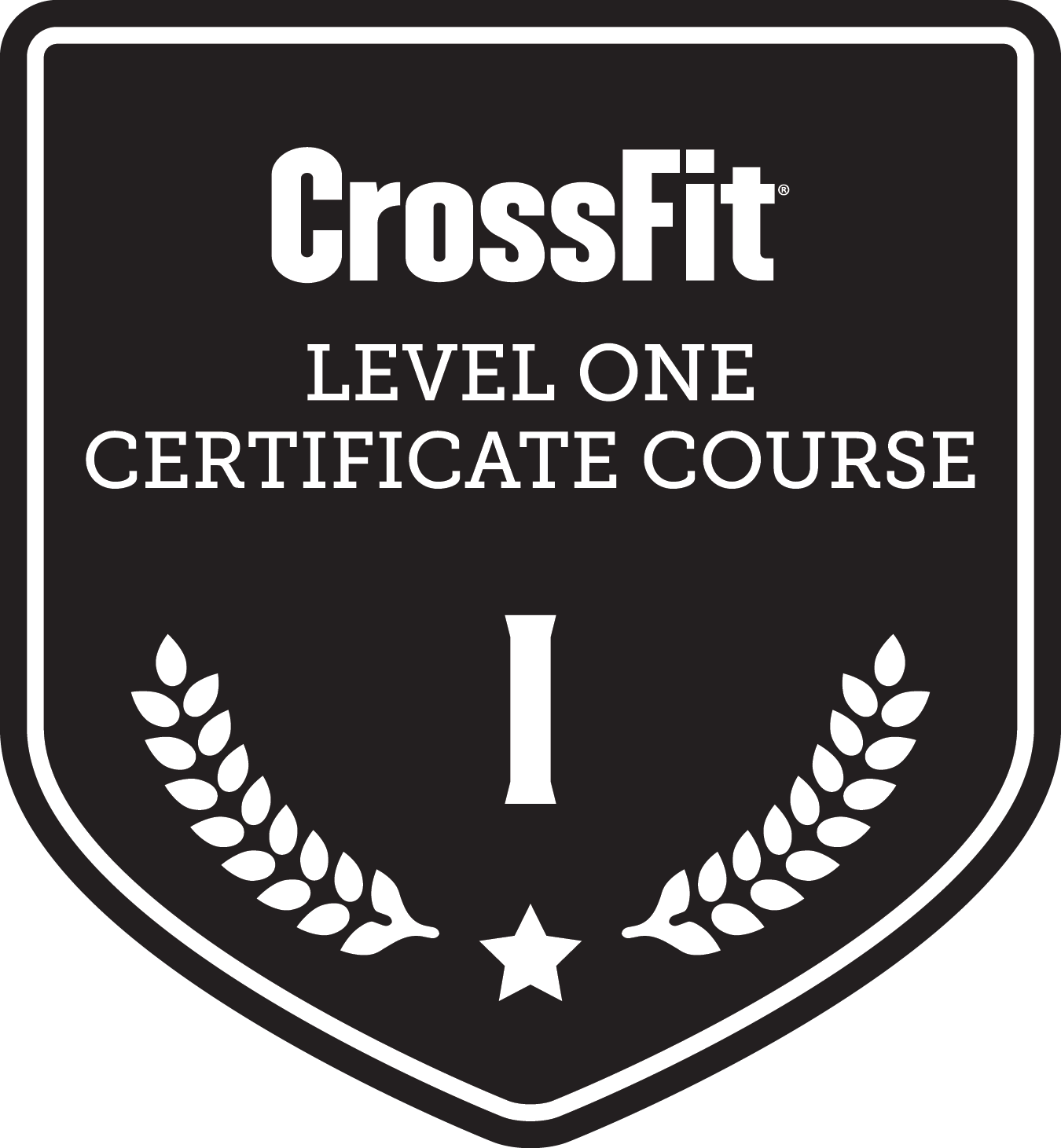 Us vector coaching class. Crossfit level certificate course