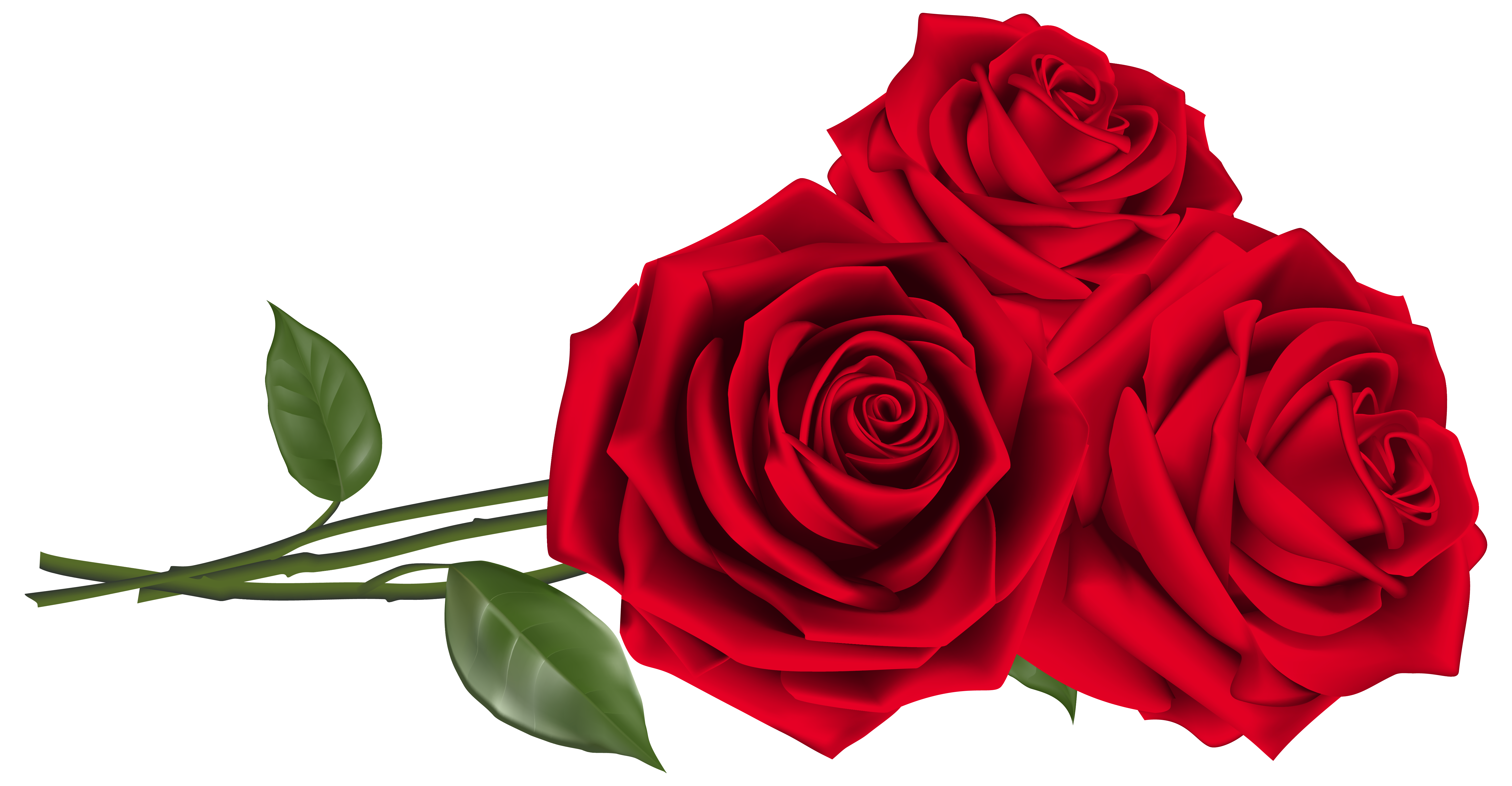 Three red clipart image. Roses png picture freeuse download