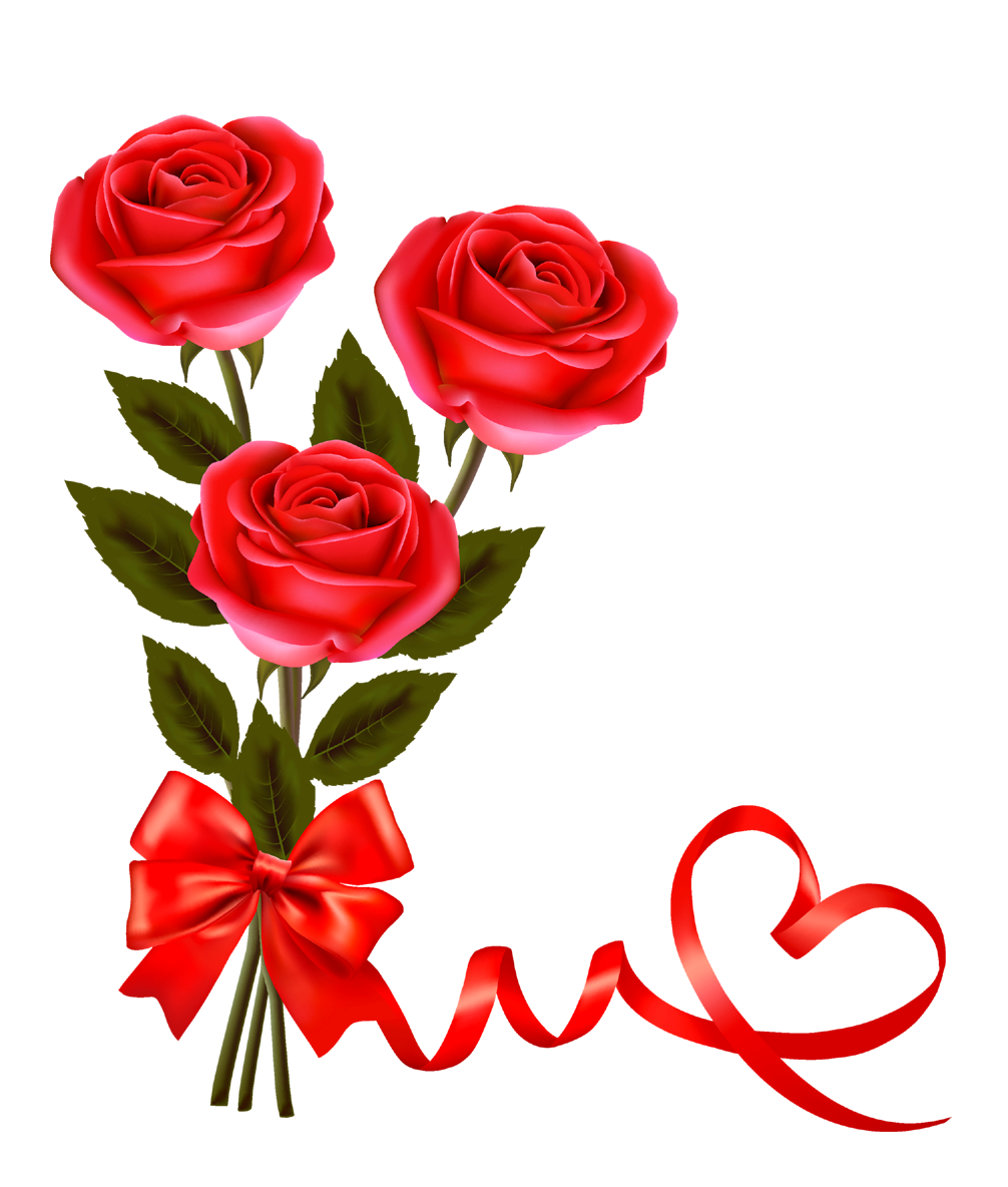 Valentine rose png. Red pictures and clipart