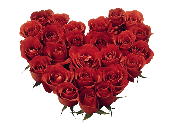 Valentine transparent family. Day flower images png