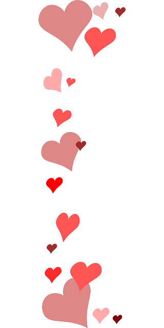 vectorial drawing heart