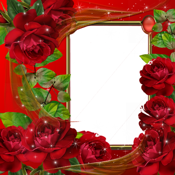 Valentines flower angels frame png. Beautiful red roses transparent