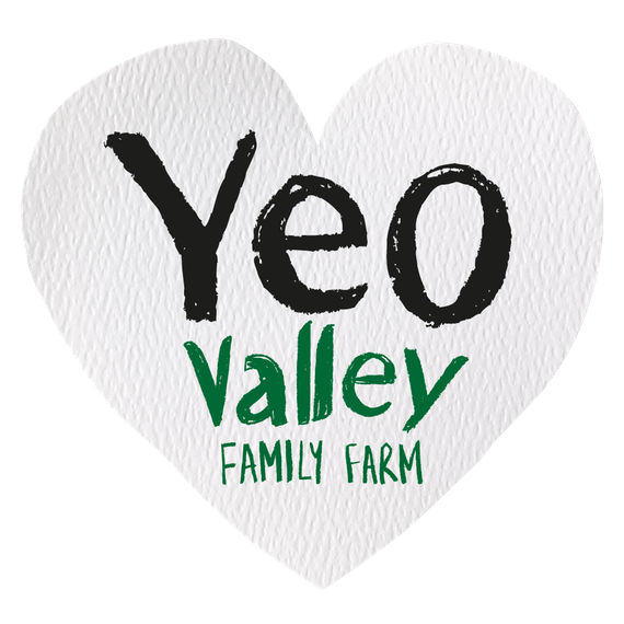 Valley vector symbol. Transforming strategy business cardiff