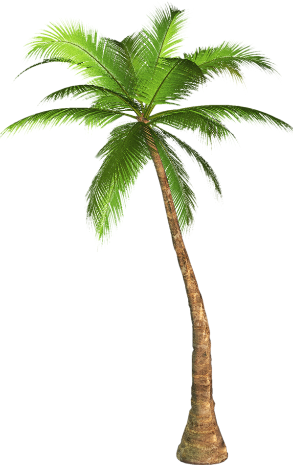 Vaporwave palm tree png. Aesthetic palmtree report abuse