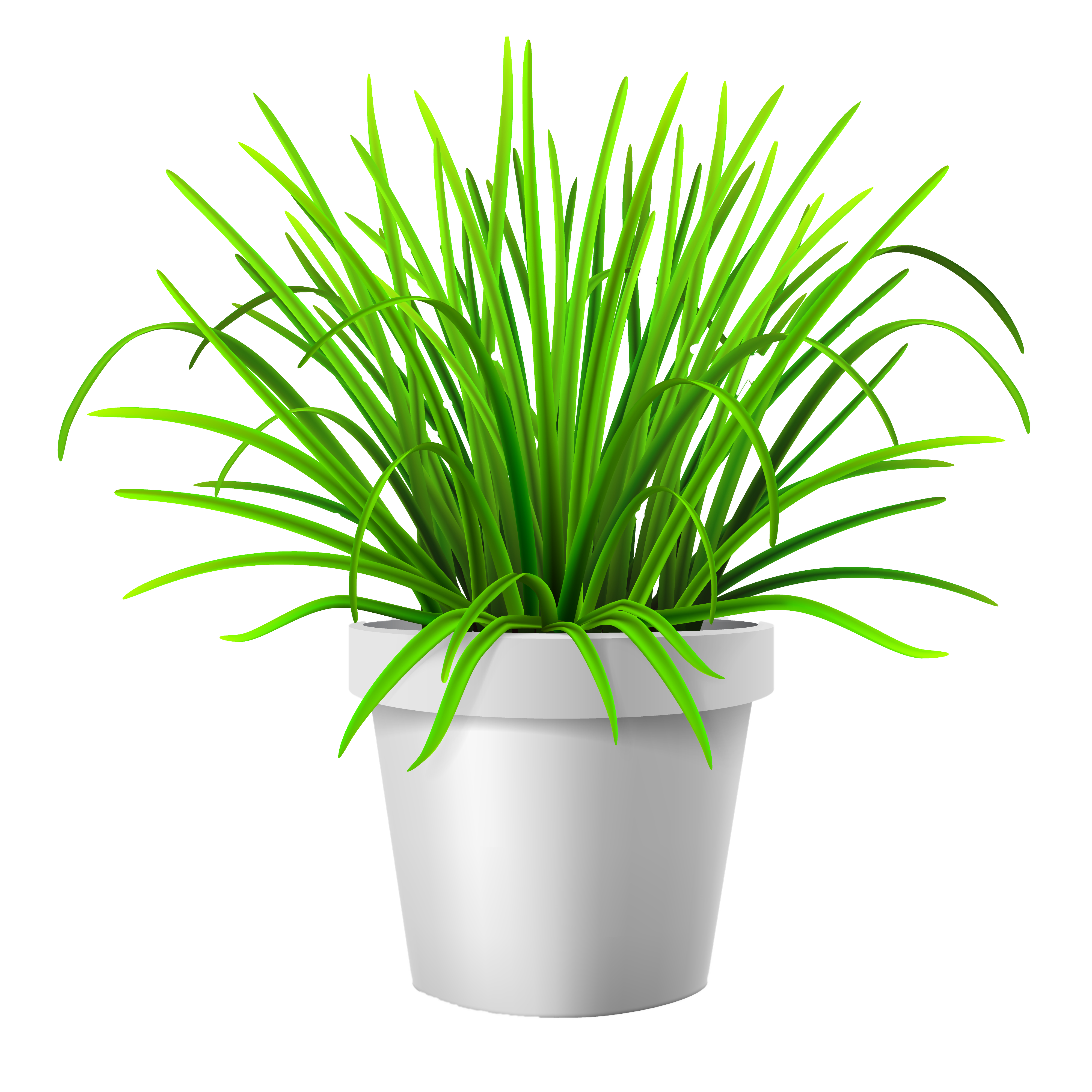 Flowerpot lawn illustration grass. Vase vector plant vector royalty free library