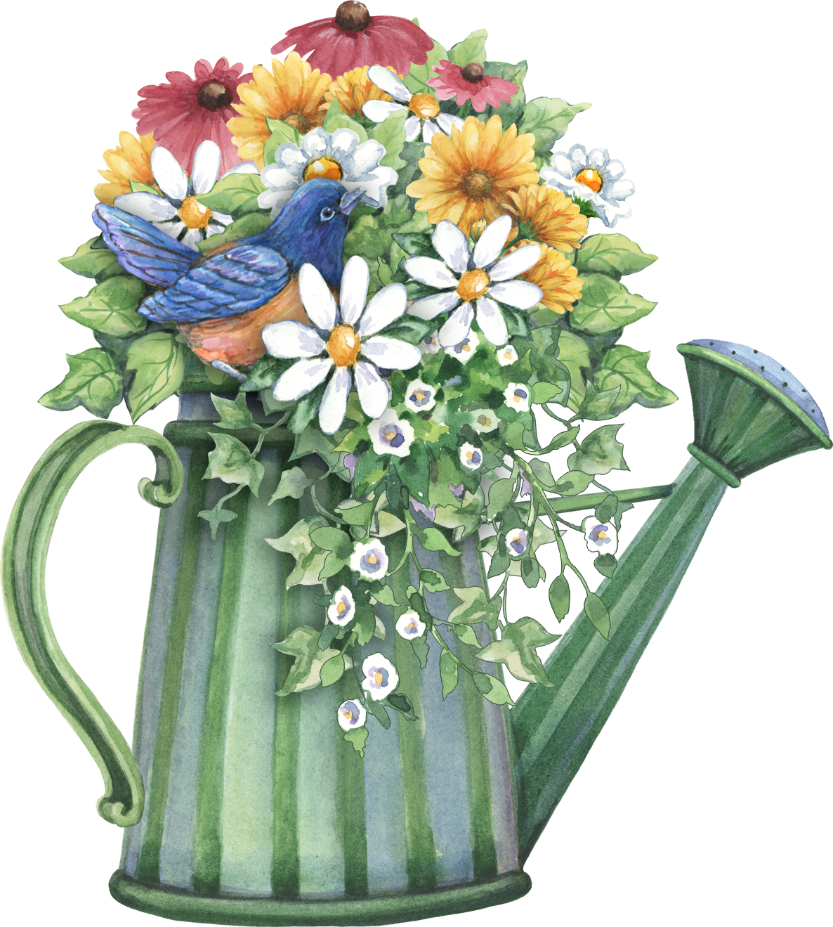 Vase vector victorian flower. Watering can full of