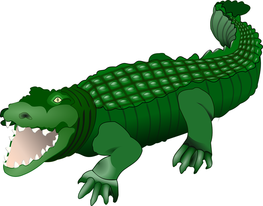 Collection of free crocoisite. Vector alligator classic picture transparent library