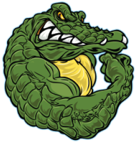 Daily service coupon gator. Vector alligator muscle banner royalty free download