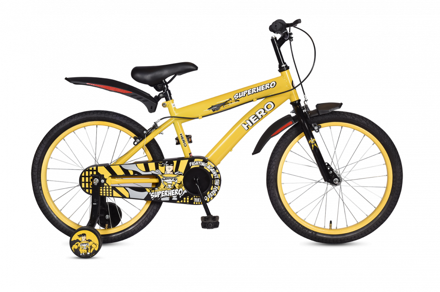 Cycle vector indian. Of life hero cycles