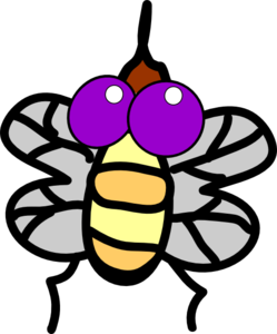 Vector insects animated. Cartoon fly clip art