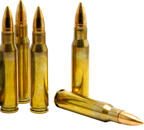 Bullets llc of idaho. Vector bullet ammo graphic library