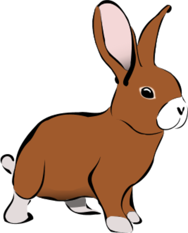 Vector rabbit angry. Free cliparts download clip