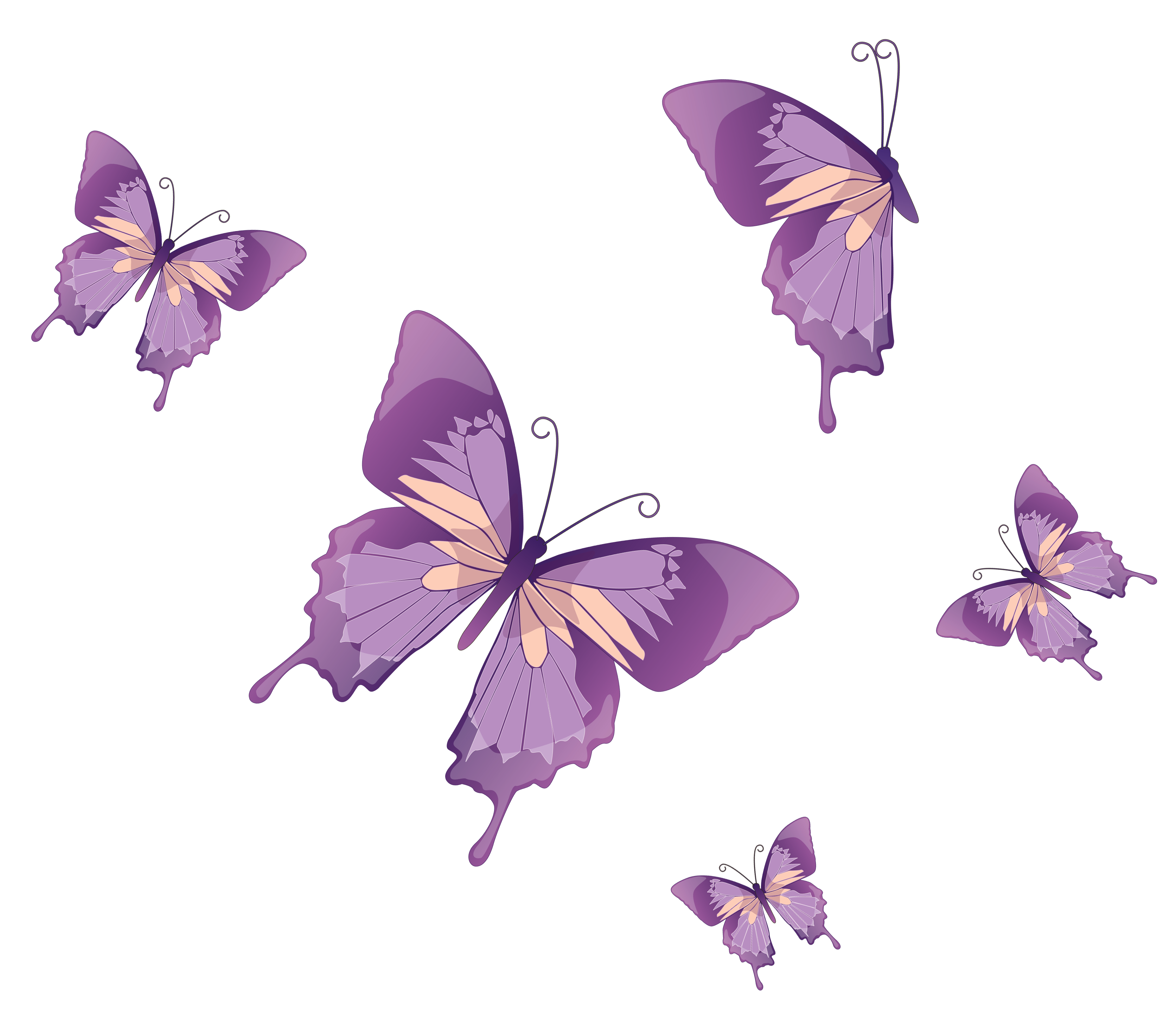 Vector butterflies. Png clipart gallery yopriceville