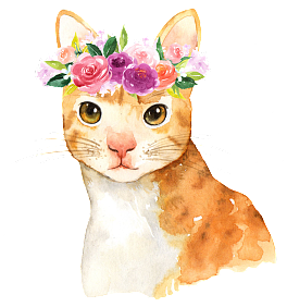 Vector cats realistic. Free rose png and