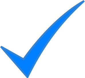 Vector checkmark correct sign. Check mark blue clip