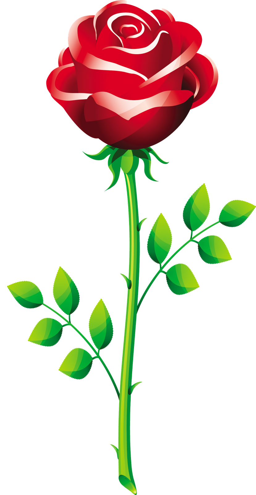 Vector clipart rose. Free roses download clip