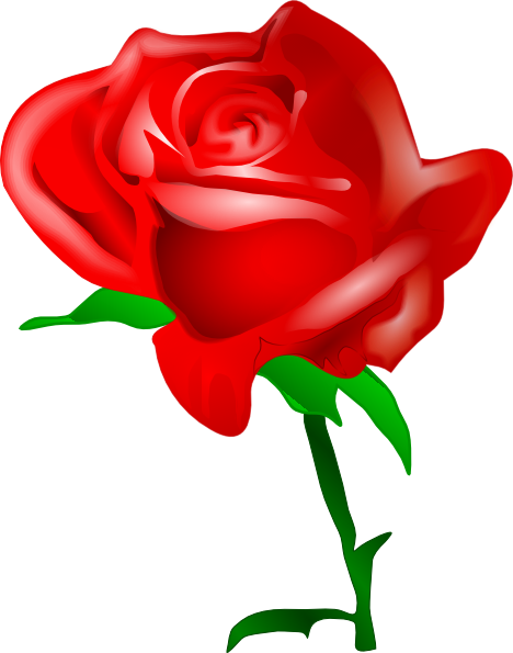 Vector clipart rose. Drawings red clip art