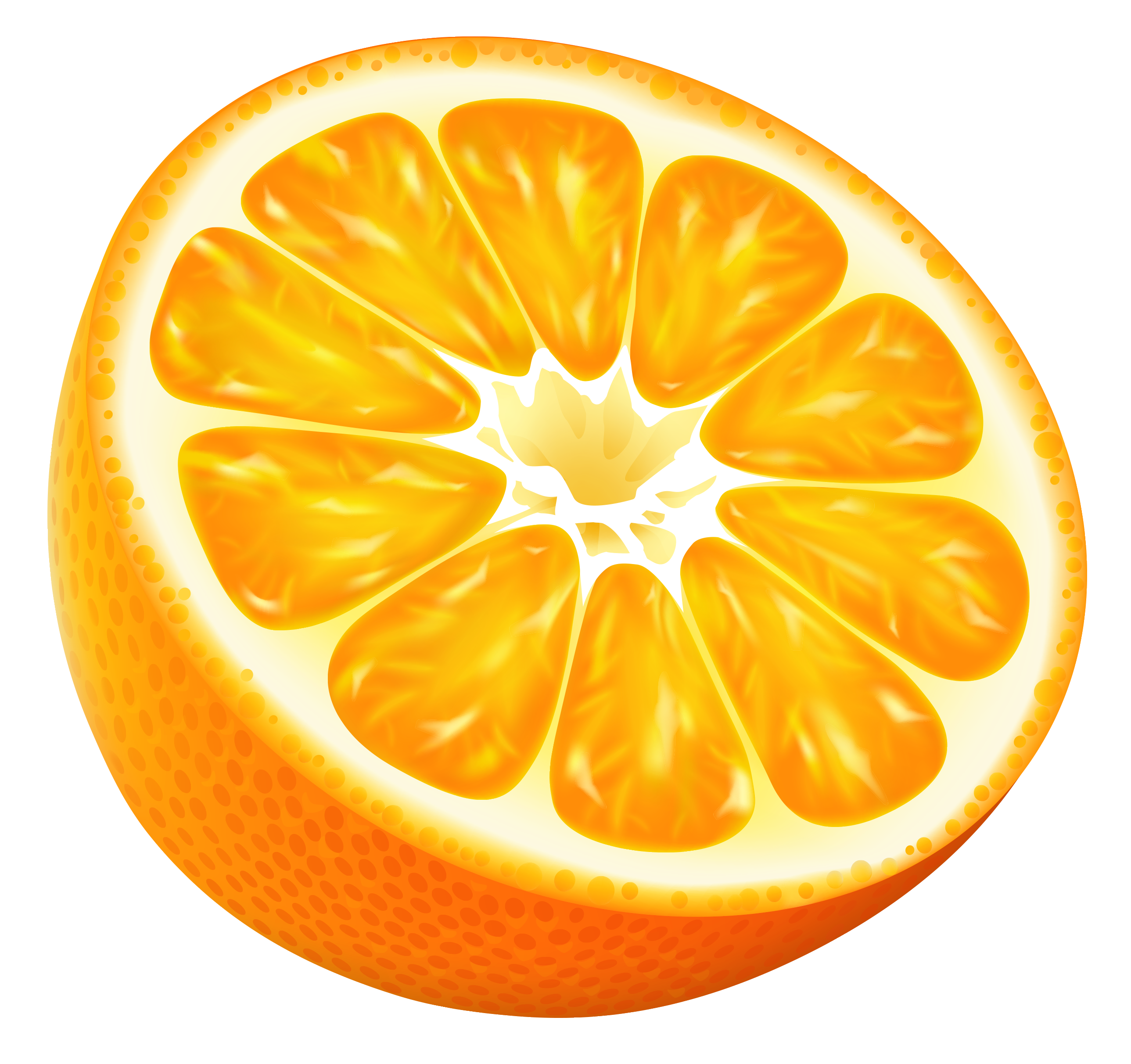 Vector fruits fruity. Half orange png clipart