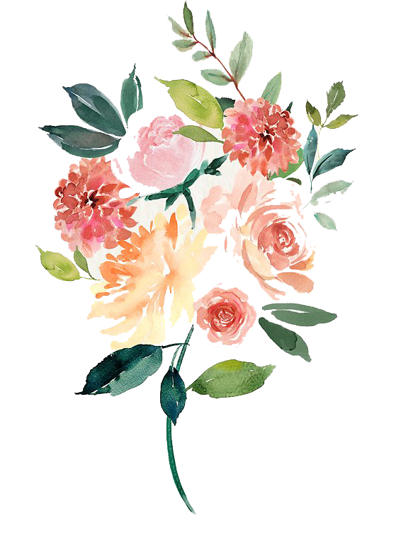 Vector composition watercolor. Free tulip png peoplepng