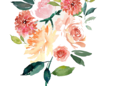 Vector composition watercolor. Flowers png clipart psd