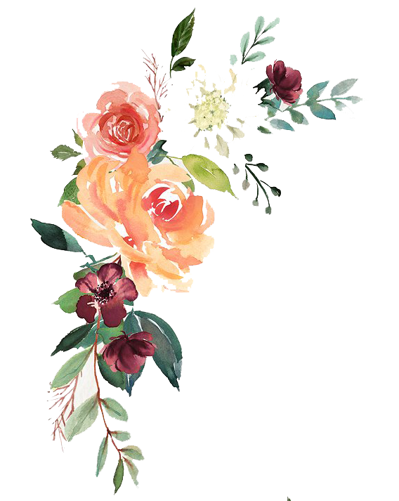 Vector composition watercolor. Floral free download peoplepng