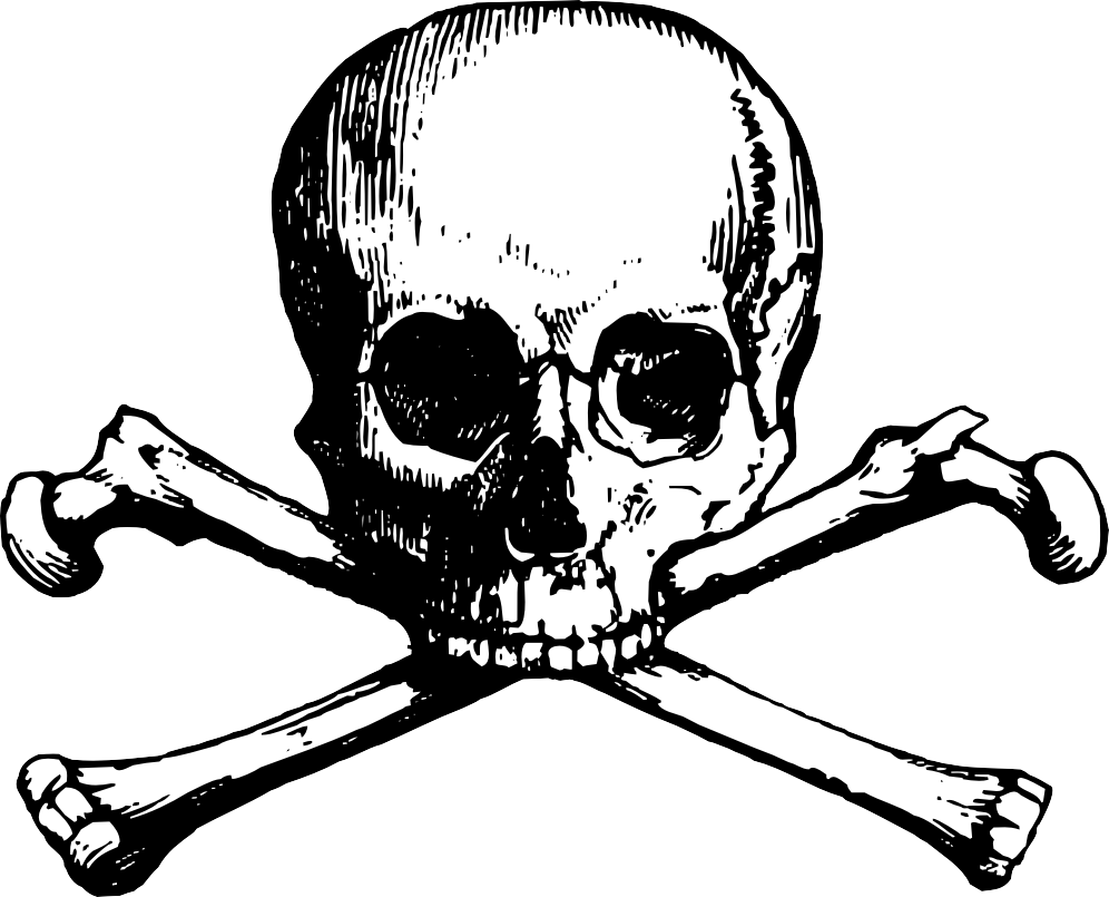 Skull and cross bones. Bone clipart two clip library library