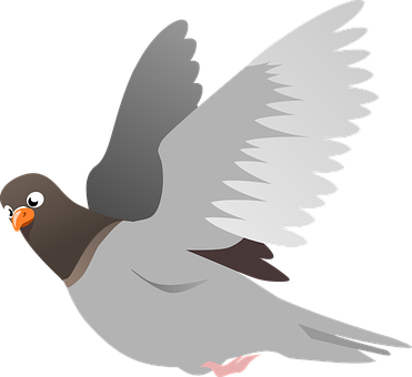 Vector doves front. Editor s choice graphics