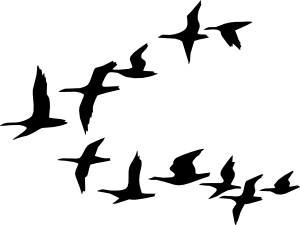 Vector doves in flight. Flying geese clip art