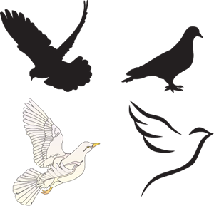 Dove logo free download. Vector doves eps picture royalty free stock