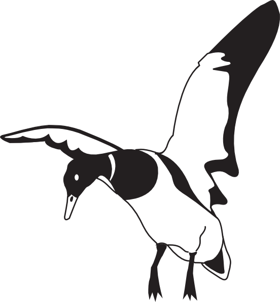 Vector duck black and white. Landing clip art at