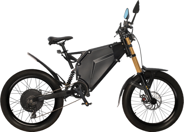 Vector ebike electric bicycle. Buy an bike with
