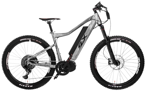 Vector ebike stylish. Power your adventures flx