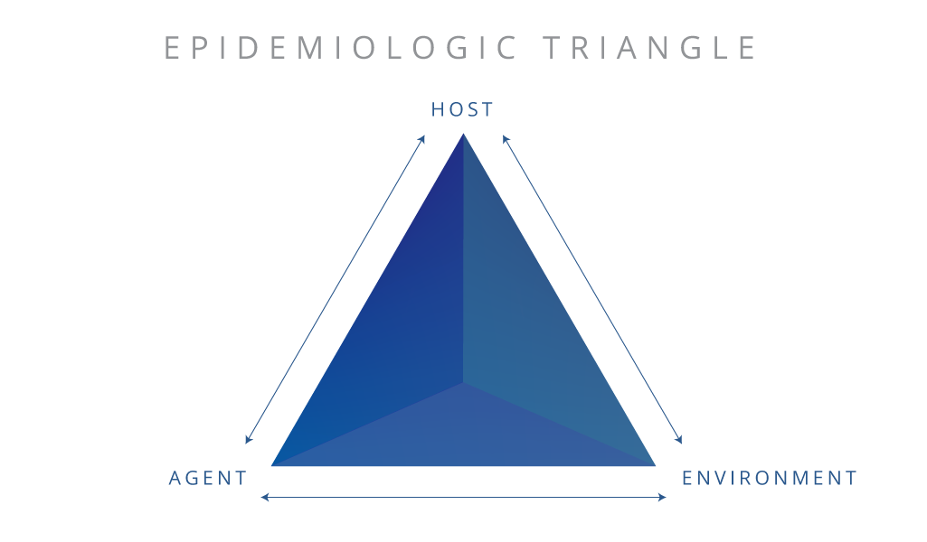 Vector host triangle. What is the epidemiologic