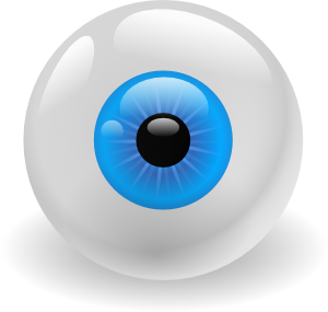 Vector eyeball bulu mata. Eye clip art at