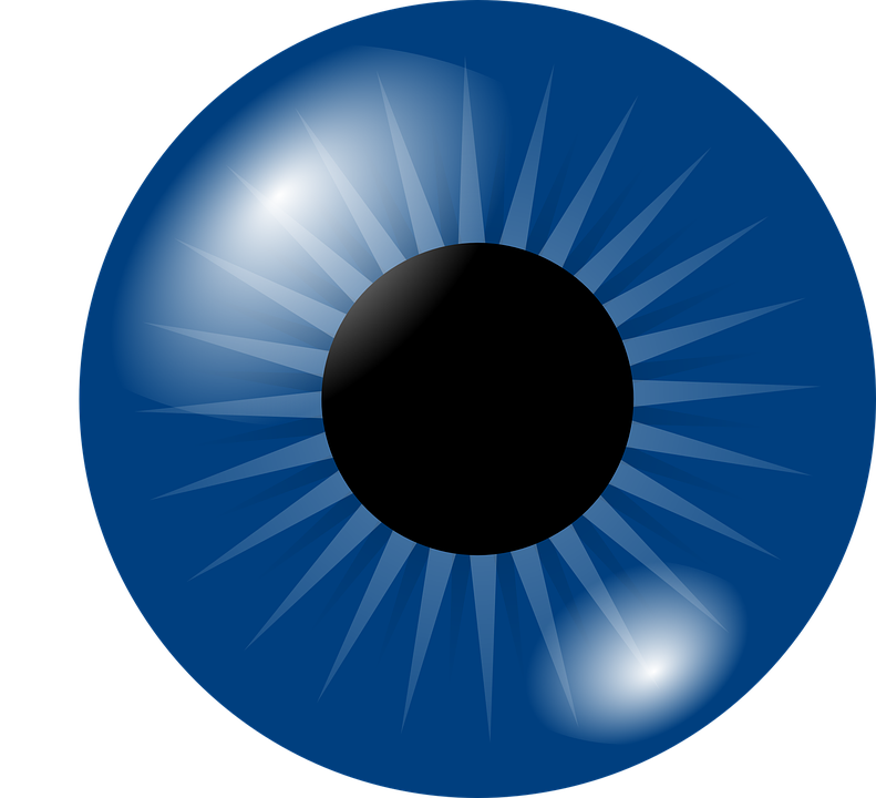 Vector eyeball human eye. Collection of free eyen